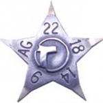 Estrellatoque9k14k18k22yplata